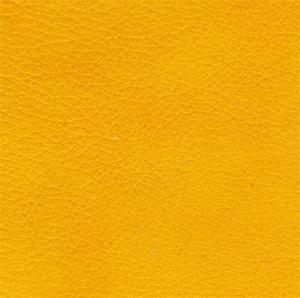 babs nappa yellow